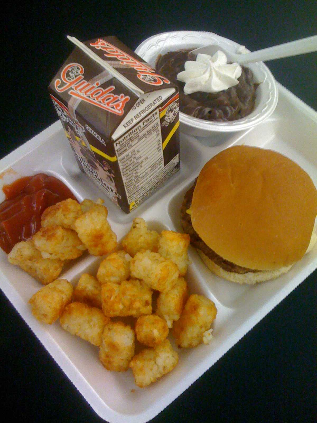 a persuasive essay on school lunches persuasive essay on school lunches online