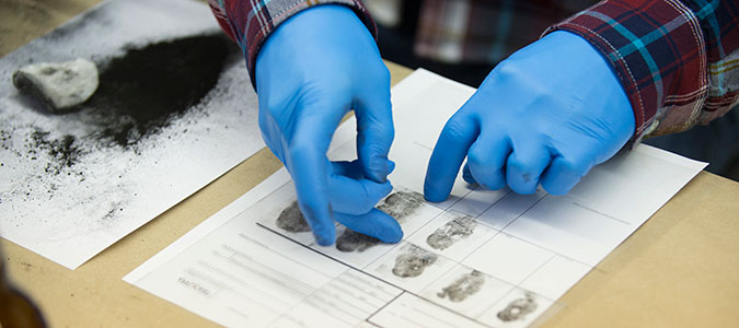 foreinsic science Earn a degree in forensics and learn to solve real-life mysteries using science, technology and investigation.